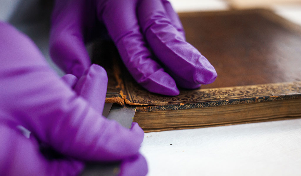 Lifting leather from the boards in preparation for cleaning the spine and repairing the binding.