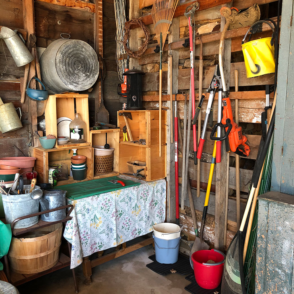 Tool shed reorg - After treatment