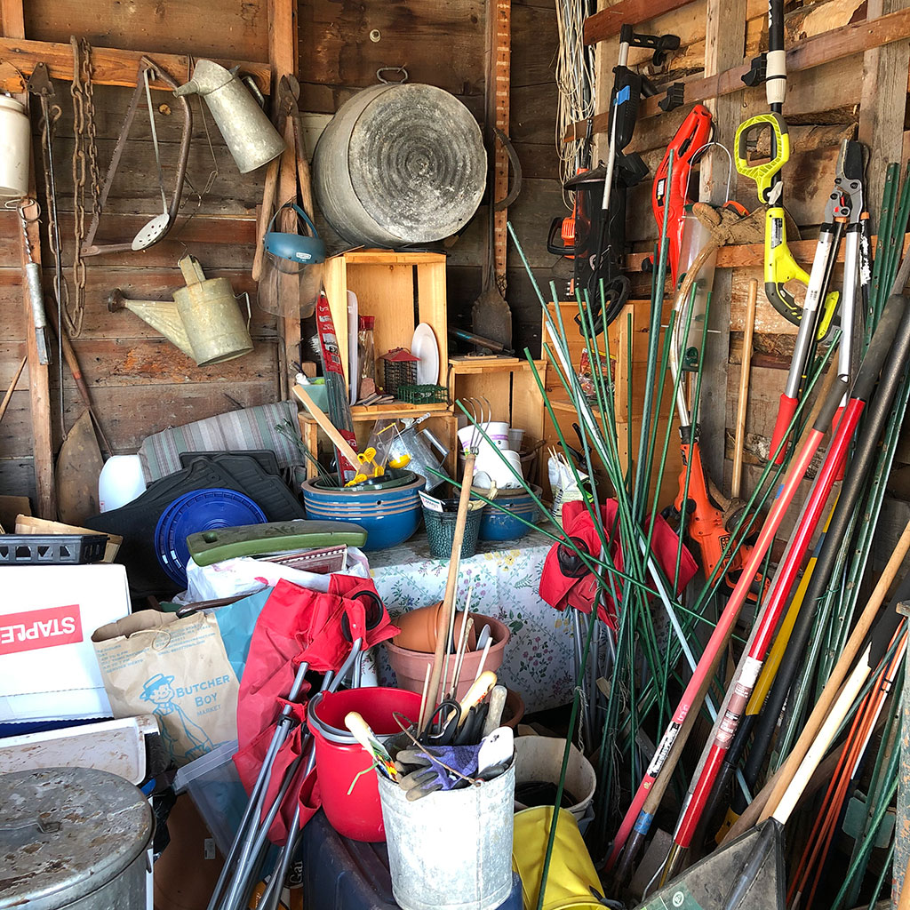 Tool shed reorg - Before treatment