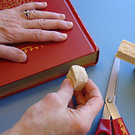 red-book-hands-sponge